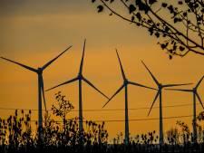 Plan voor vier windmolens erbij in Oisterwijk: midden in een nieuw bos