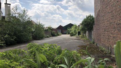 Gemeente wil administratief centrum op site houtzagerij Lesage bouwen