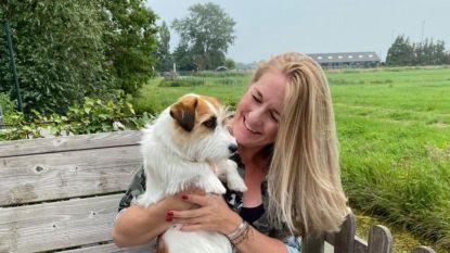 """Nederlands hondje Puck gered na vergiftiging door té veel water drinken: """"Let goed op je hond"""""""