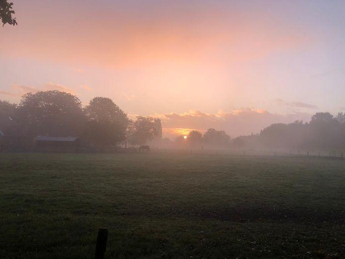 Anita Kusters-Berndsen maakte deze foto tijdens haar ochtendwandeling in Gaanderen.