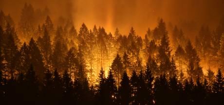 Tiener krijgt boete van 37 miljoen dollar voor aansteken bosbrand Oregon