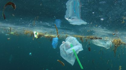 De ondergang van het plastic rietje