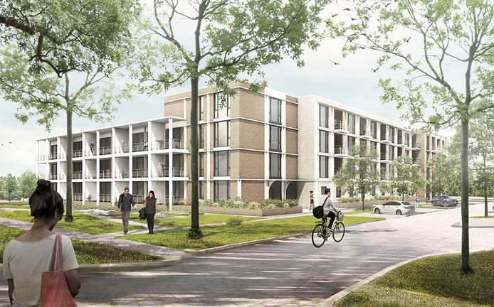 Betaalbare, energiezuinige  woningen in het groen.