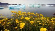 Wereld buist op klimaatdoelstellingen: opwarming aarde nadert limiet en ijskap smelt zoals voorspeld in worstcasescenario