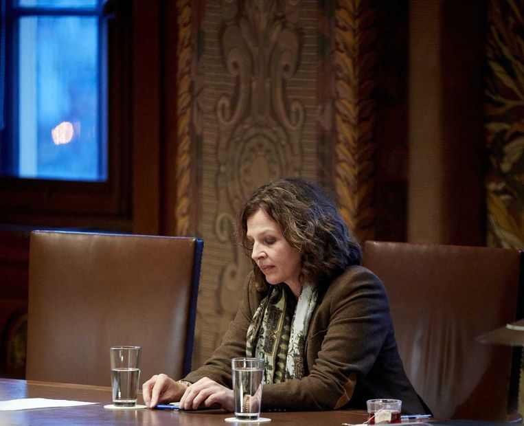 Minister Edith Schippers in de Eerste Kamer. Beeld anp