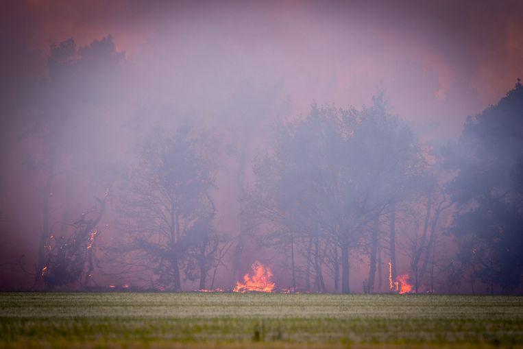 In Vorselaar wil men door de bossen en natuurgebieden af te sluiten branden zoals in Liereman bij Oud-Turnhout voorkomen