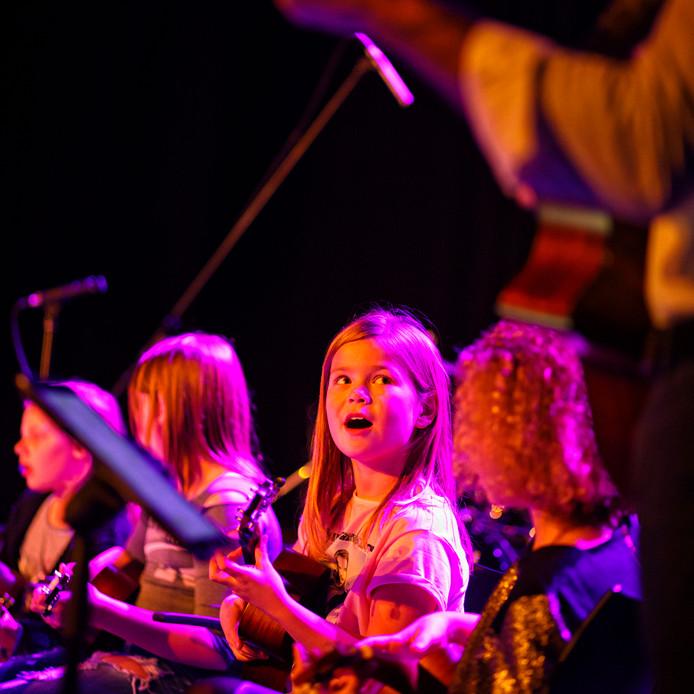Onderdeel van de benefietavond Vrienden van Boxtel Live in 2016 was een optreden van het Groot Boxtels Ukelele Orkest.
