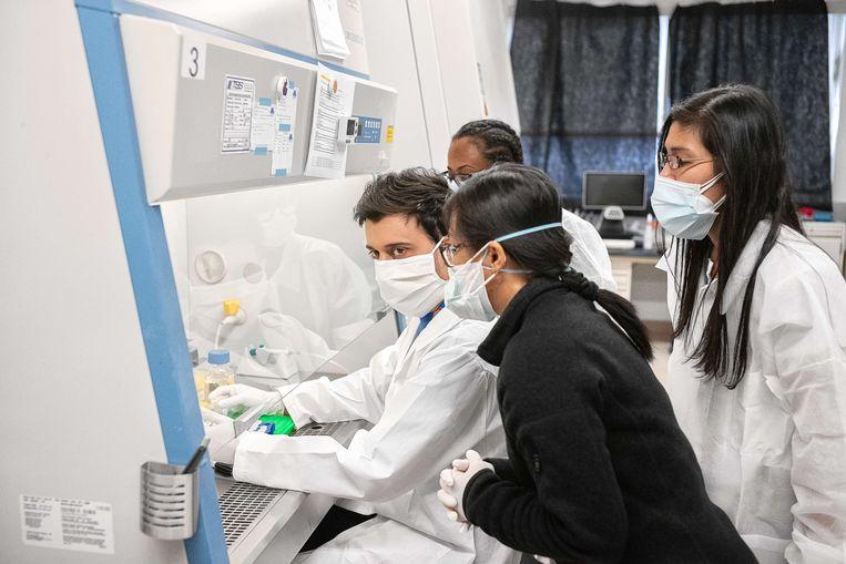 In een lab in New York worden covid-19 samples getest.  Beeld AFP
