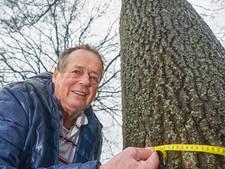 'Ja, dit was het boompje dat ik plantte'