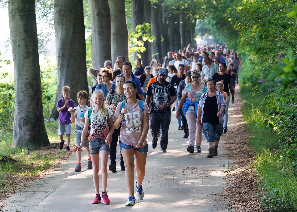 Avondvierdaagse weer gestart , meer dan 3000 lopers op pad in Roosendaal Archieffoto : Gerard van Offeren/Pix4Profs