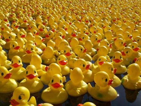 5.000 badeendjes racen voor goede doel in Almelo