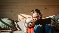 Thuis achter de laptop vanwege het coronavirus? Zo hou je het ergonomisch