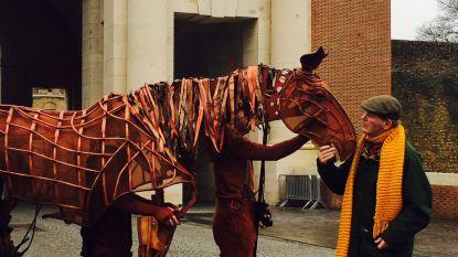 Auteur Warhorse brengt vertelconcert in Sint-Jacobskerk