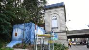 Huis van de Tolerantie Leuven en Treepack fleuren Brusselsestraat op