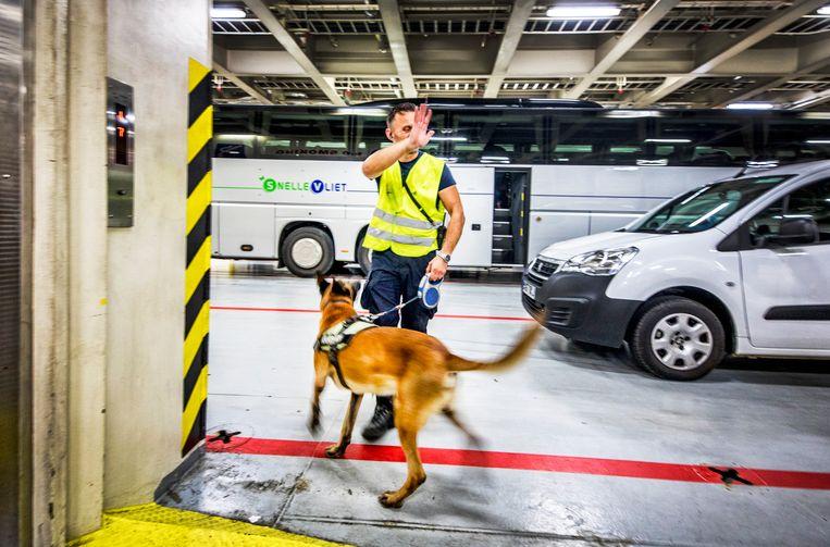 Controle met honden aan boord van het schip voor vertrek.  Beeld Raymond Rutting / de Volkskrant