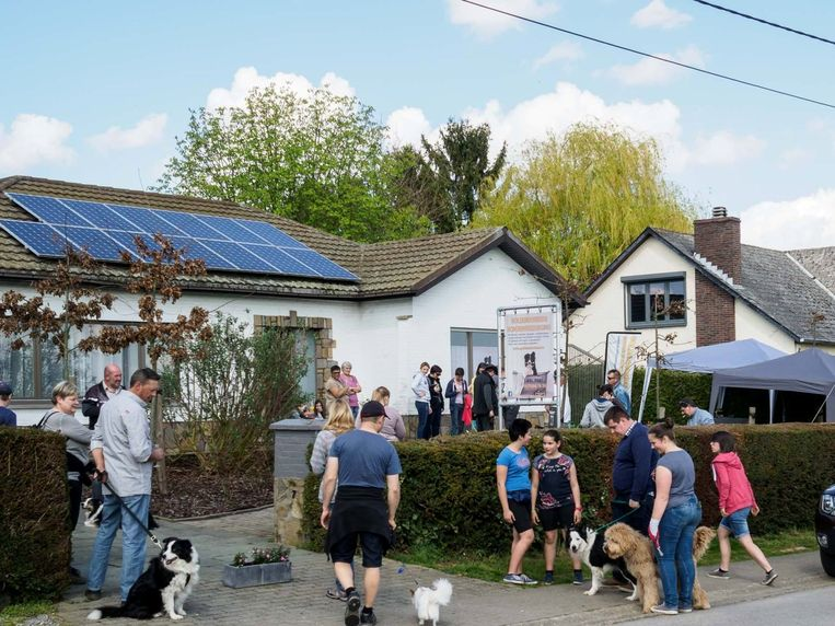 De hondenwandeling van Goldenborders Hondenverzorging trekt steeds veel viervoeters en hun baasjes aan.