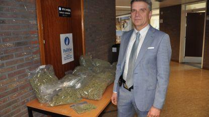 Politie rolt cannabisplantage op in Sint-Martens-Latem: 500 planten in beslag genomen
