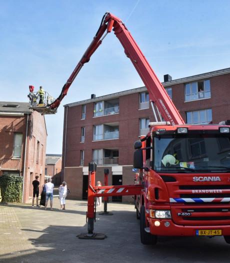 Brandweer moet vogeltje uit de nesten helpen in Tilburg