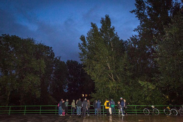 Een groepje vleermuizenbewonderaars verzamelt zich in Buitenveldert Beeld Dingena Mol