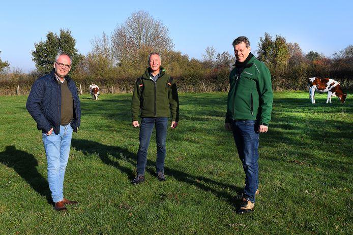 Eric Lamers (r) met Emiel Anssems (l) en Theo Bakker op tussen de koeien van de Schutkooi in Vortum-Mullem.