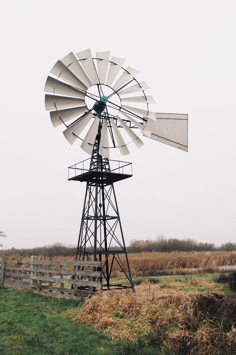 Windmotor in De Alde Feanen. Beeld Flip van Doorn