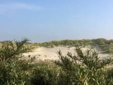 Snelweg van zand in de Meeuwenduinen
