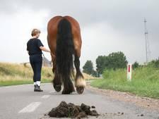 Paardenpoep: boete of niet?