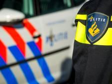 Bestuurder rijdt zonder rijbewijs door Den Bosch en probeert te vluchten voor politie