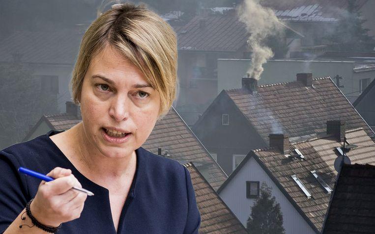 Minister Schauvliege wil het aantal kachels in Vlaanderen in kaart brengen.