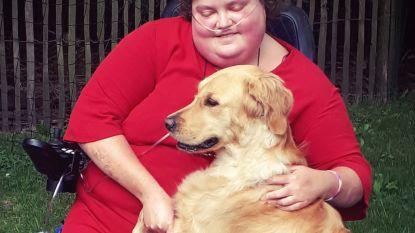 """Assistentiehond wordt na jaar bij Sien (31) weggenomen: """"Ze pakken mijn beste vriend af"""""""