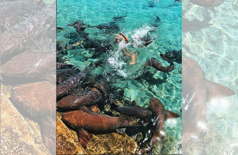 Het exacte moment dat Zaturskie onder water werd getrokken door de haai.