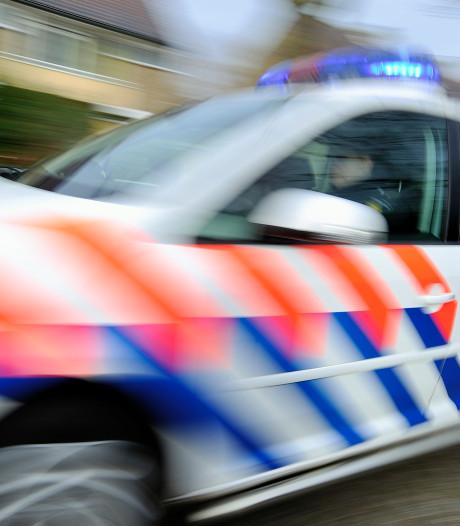 Verwarde man slaat met bijl richting buurtbewoners en verwondt hond
