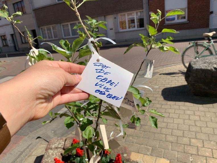 Buurtbewoners planten wensboom
