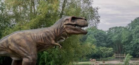 Wat doe je deze herfstvakantie? Van dinosaurussen tot natuurgebieden, en kijk vooral omhoog!