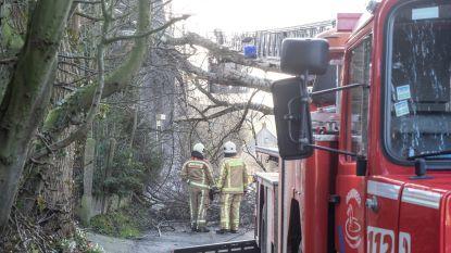 Brandweer nog op tal van plaatsen aan de slag om puin te ruimen in de Vlaamse Ardennen