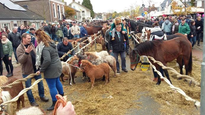 Paarden en pony's op de paardenmarkt.