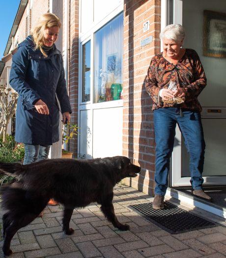 'Opoe' Nina is dolblij met oppashond Galí: 'Wandelen met de hond is toch gezelliger dan in je eentje'