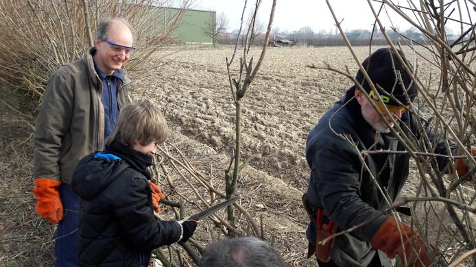 Ook kinderen deden mee aan het heggenvlechten in Balgoij.