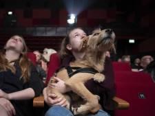 Ruim 50 honden naar doggybioscoop Rotterdam