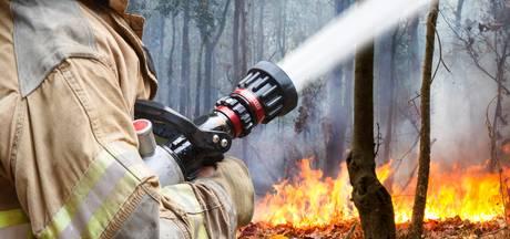 Code rood in Noord-Brabant en Zeeland, grote kans op natuurbranden door hitte