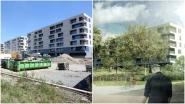 Uitgestrekt landschapspark van Lembeek tot Buizingen krijgt vorm: parking Leide wijkt voor groen