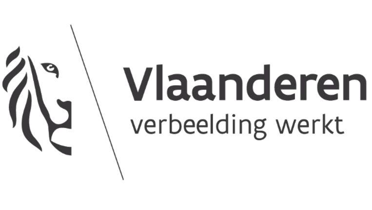 Nieuwe Vlaamse leeuw kost overheid bijna 1 miljoen euro   De Morgen