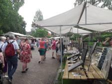 Recordaantal kunstenaars bij kunstmarkt in Hengelo