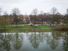 Groningen is bezaaid met smileys van bladeren: wie is die mysterieuze bladkunstenaar?
