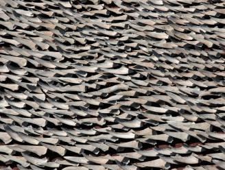 Chinese nieuwe rijken zweren haaienvinnensoep stilaan af
