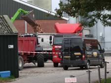 Vogelgriep bij pluimveebedrijf in Oldekerk