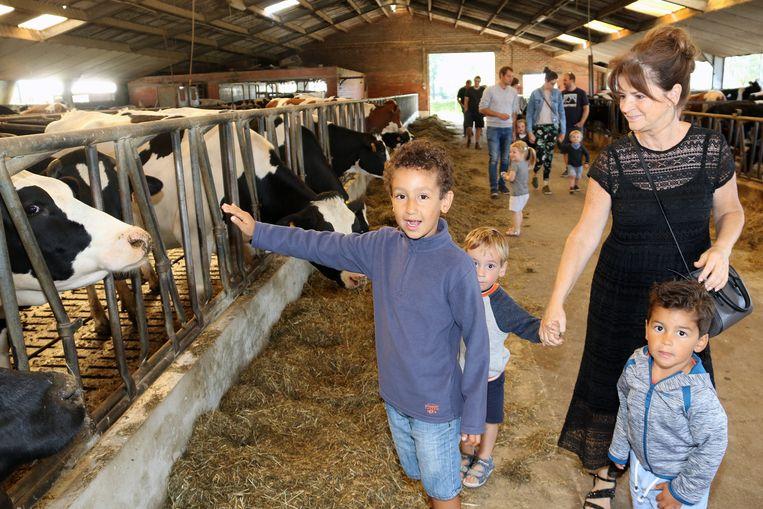 Rafaël, Andreas en Lucas genieten van een uitstapje bij de boerderij