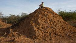 Mysterieuze 4.000 jaar oude termietenheuvels ontdekt