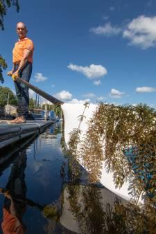 Provincie wil roeivereniging Kampen helpen met overlast waterplanten