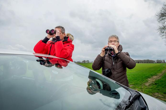 Pieter Kleiterp en Bert van Haaften speuren de polder af om patrijzen te tellen.